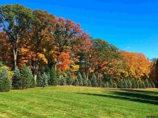 Land for sale in Colonie, NY