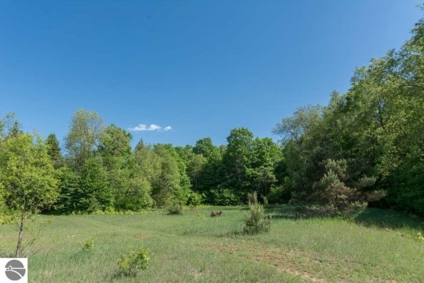Listing Image #2 - Land for sale at S Kitlinger Road, Empire MI 49630