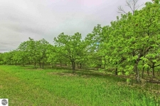 Listing Image #2 - Land for sale at 00 Powell Road, Kewadin MI 49648