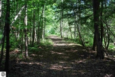 Listing Image #2 - Land for sale at 5330 Timberwyck Trail, Interlochen MI 49643