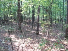 Land for sale in Berkeley Springs, WV