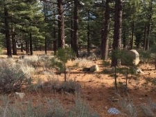 Land for sale in Reno, NV