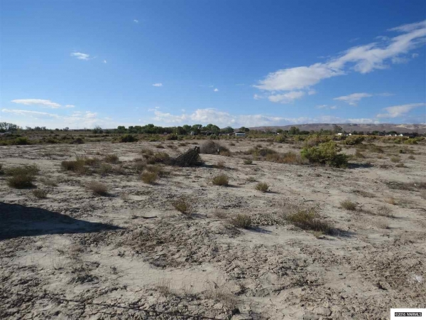 Listing Image #3 - Land for sale at 4255 E E Hwy 50, Fernley NV 89408