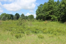 Land for sale in Canadian Lakes, MI
