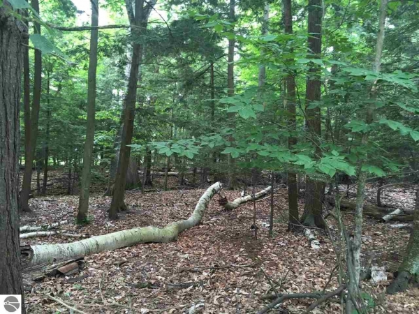 Listing Image #1 - Land for sale at Lot 101 N Knollwood Drive, Northport MI 49670