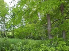 Land for sale in Sterling, MI