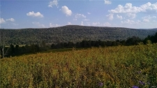 Land for sale in Cherry Valley, NY