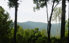 Land for sale in Ellijay, GA