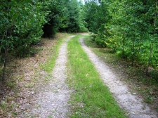 Land for sale in New Hartford, CT