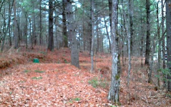 Listing Image #2 - Land for sale at 15+AC Twin Springs, Mineral Bluff GA 30559