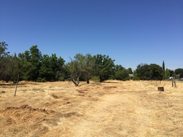 Listing Image #2 - Land for sale at 2605 MARIPOSA AVENUE, CHICO CA 95973