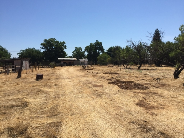 Listing Image #3 - Land for sale at 2605 MARIPOSA AVENUE, CHICO CA 95973