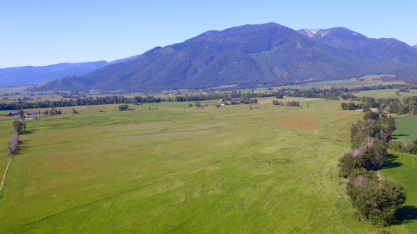 Listing Image #2 - Land for sale at 14475 N Rock Creek Lane, Haines OR 97833