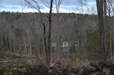 Land for sale in Sutton, NH
