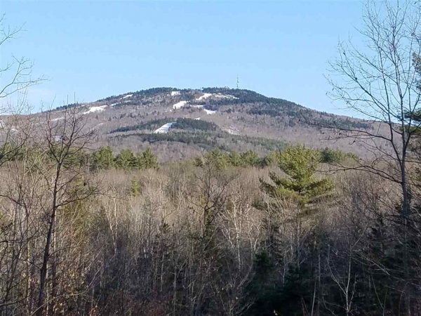 Listing Image #2 - Land for sale at Messer Messer, Goshen NH 03752