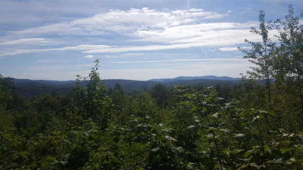 Listing Image #2 - Land for sale at Lot 42 Meadow, Newbury NH 03255