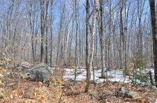 Land for sale in Enfield, NH