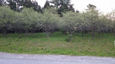 Land for sale in Grantham, NH