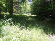 Listing Image #1 - Land for sale at 24 Stage Road, Lempster NH 03605