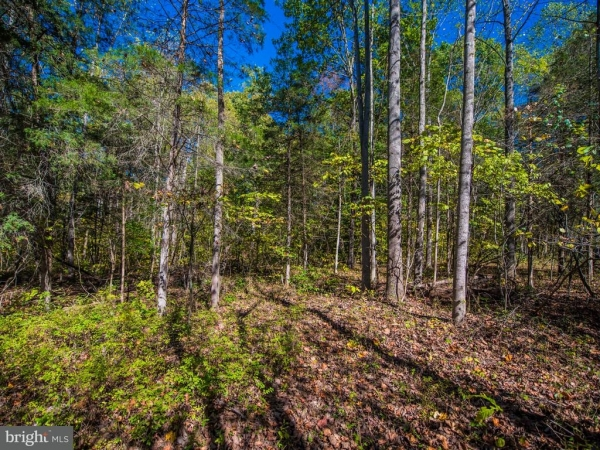 Listing Image #1 - Land for sale at Rocky Rocky Lane, Front Royal VA 22630