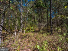 Listing Image #2 - Land for sale at Rocky Rocky Lane, Front Royal VA 22630