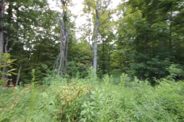 Listing Image #1 - Land for sale at 2620  Dotsonville Church Rd., Clarksville TN 37042