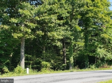 Listing Image #1 - Land for sale at 480 Parishville Road, Gore VA 22637