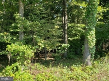 Listing Image #3 - Land for sale at 480 Parishville Road, Gore VA 22637
