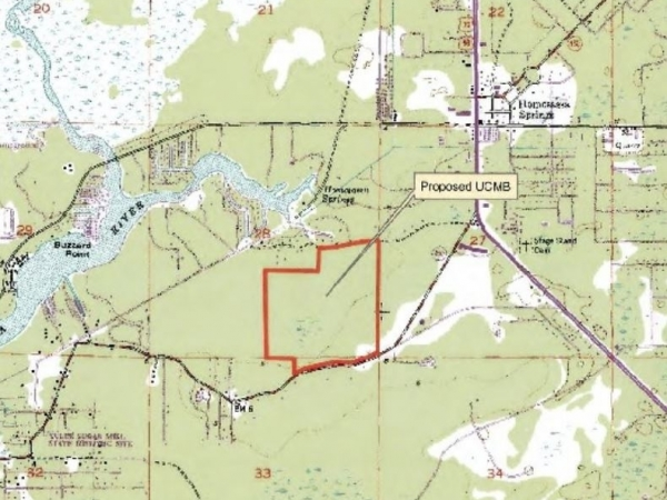 Listing Image #4 - Land for sale at 9050 W Spring Cove Rd, Homosassa Springs FL 34446