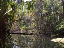 Listing Image #2 - Land for sale at 9050 W Spring Cove Rd, Homosassa Springs FL 34446