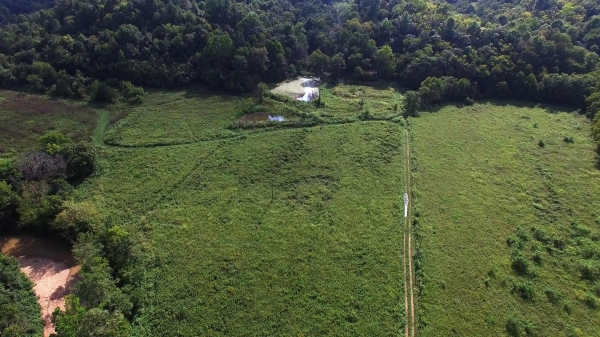 Listing Image #3 - Land for sale at Casey County, Liberty KY 42539
