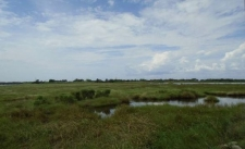 Listing Image #2 - Land for sale at Irish Bayou, New Orleans LA 70129