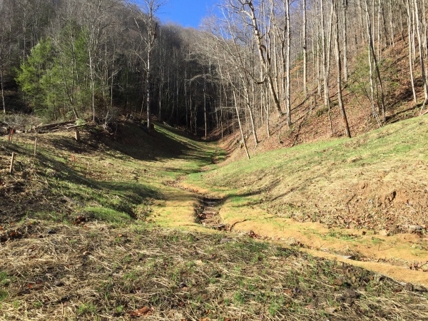 Listing Image #3 - Land for sale at Browns Creek, West Virginia, USA, Welch WV 24801
