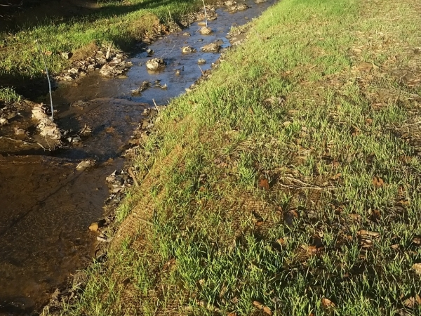 Listing Image #4 - Land for sale at Browns Creek, West Virginia, USA, Welch WV 24801