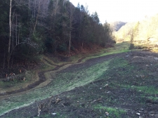 Listing Image #1 - Land for sale at Browns Creek, West Virginia, USA, Welch WV 24801