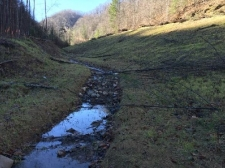 Listing Image #2 - Land for sale at Browns Creek, West Virginia, USA, Welch WV 24801