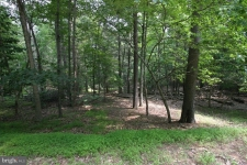 Land for sale in Great Cacapon, WV