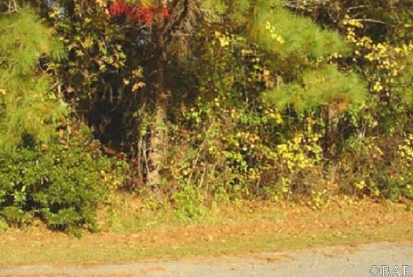 Listing Image #1 - Land for sale at 126 Daphne Lane, Manteo NC 27954