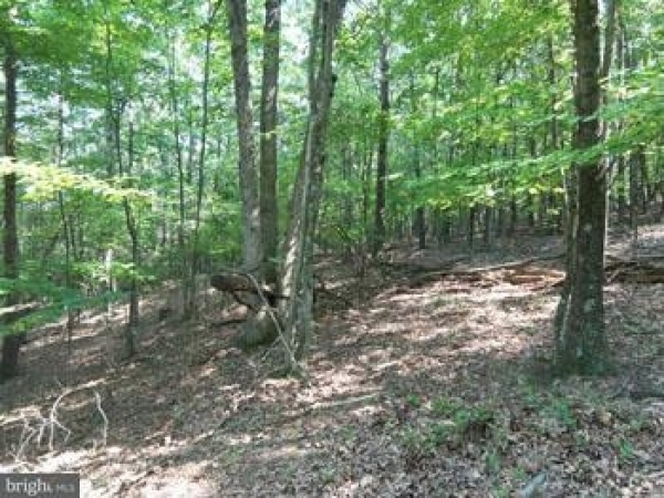 Listing Image #1 - Land for sale at Lot 6 Slim Chance, Berkeley Springs WV 25411