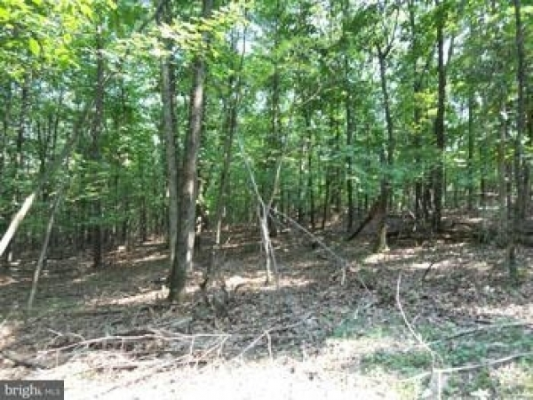 Listing Image #3 - Land for sale at Lot 6 Slim Chance, Berkeley Springs WV 25411