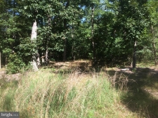 Listing Image #2 - Land for sale at FOUR Four Wheel Drive, Star Tannery VA 22654