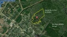 Listing Image #1 - Land for sale at 0 Jinks St, Yemassee SC 29945