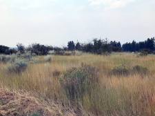 Listing Image #1 - Land for sale at Pleasant View Lot 34, CHILOQUIN OR 97624