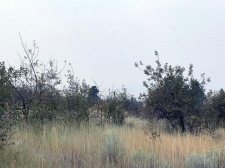 Listing Image #3 - Land for sale at Pleasant View Lot 34, CHILOQUIN OR 97624