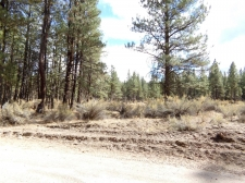 Land for sale in BEATTY, OR