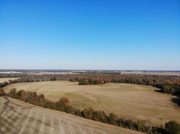 Listing Image #4 - Land for sale at Hickory Grove Road, Brownsville TN 38012