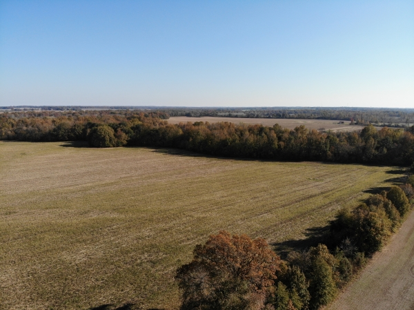 Listing Image #5 - Land for sale at Hickory Grove Road, Brownsville TN 38012