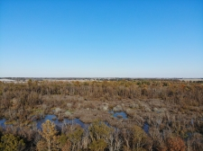 Listing Image #7 - Land for sale at Hickory Grove Road, Brownsville TN 38012