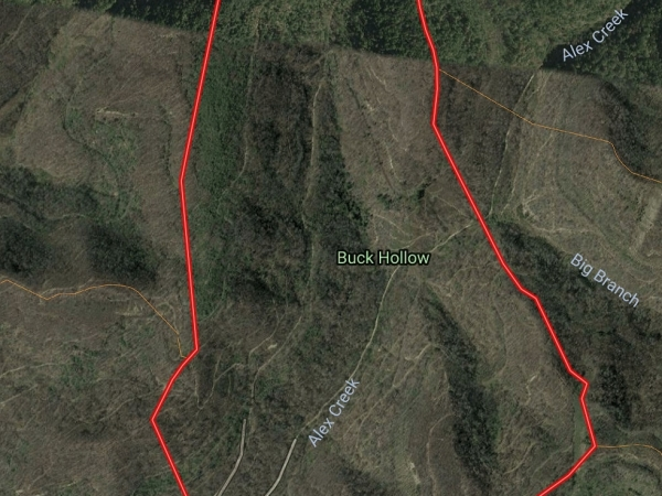 Listing Image #1 - Land for sale at Alex Creek Road, Flat Lick KY 40935