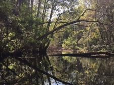 Land for sale in Homosassa Springs, FL